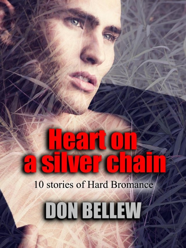 Don Bellew Heart on a Silver chain